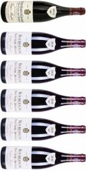 Bourgogne - 1 Premier Cru Nuits-Saint-Georges og 5 Bourgogne Rouge