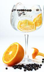 Dingle Gin glas - 6pk