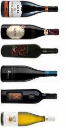Top 6 vine - Velkomst smagekasse (VF)